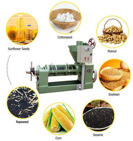Оборудование для подготовки и прессования рапсового масла
